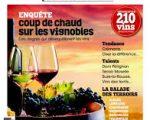 L'art du Vin et de la transmission : Arnaud Chambost